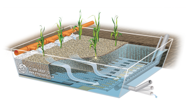 Aerated Reedbed diagram