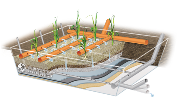 Vertical flow reed bed