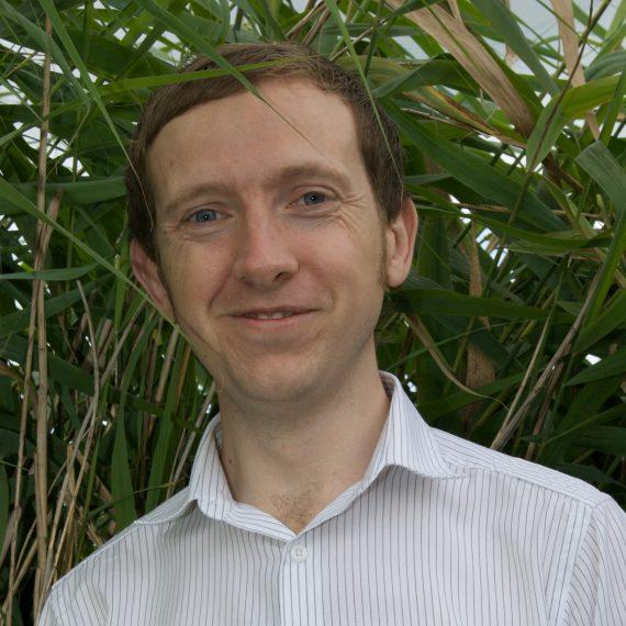 Stephen Harvey